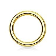 Leppe Piercing Ringe i Gull